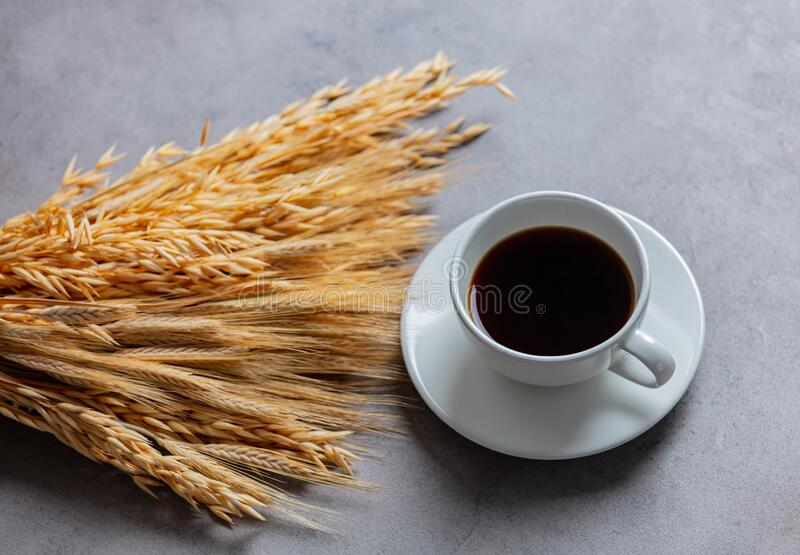 Cup of coffee and wheat spikelets on gray background royalty free stock photography