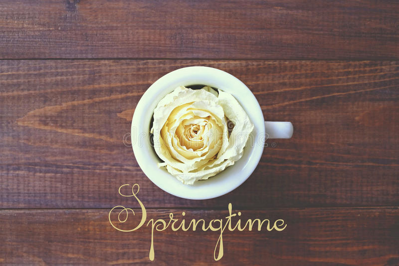 A cup of coffee and a white rose, spring royalty free stock photography