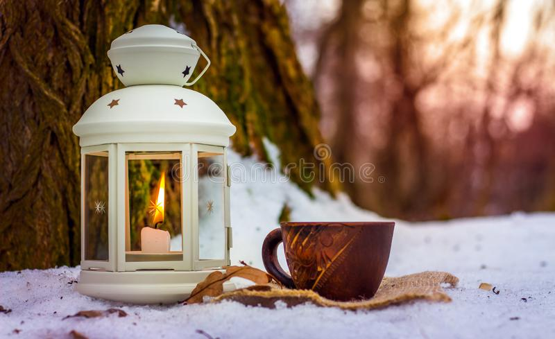 Cup of coffee in winter forest next to lantern with candle near old tree in the evening_ stock photo