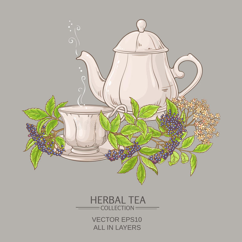 Cup of elderberry tea and teapot. On color background royalty free illustration