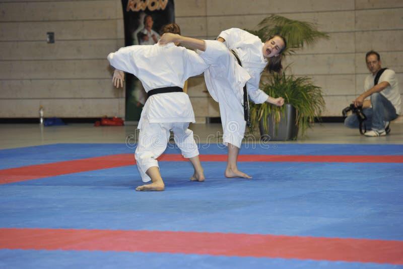 cup europejskie walczące karate mistrza techniki obrazy stock
