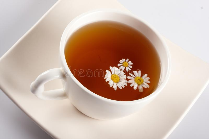 Cup of flower tea royalty free stock image