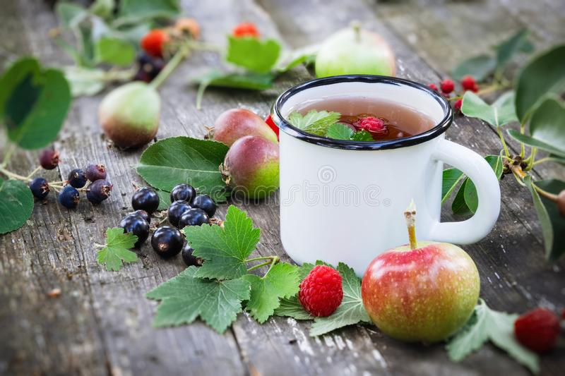 Cup of fruit tea with apples, pears, raspberries and black currant berries on wooden table outdoors. royalty free stock photo