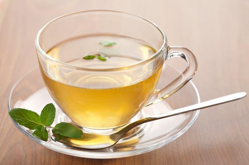 Cup grüner Tee mit Minze stockfoto