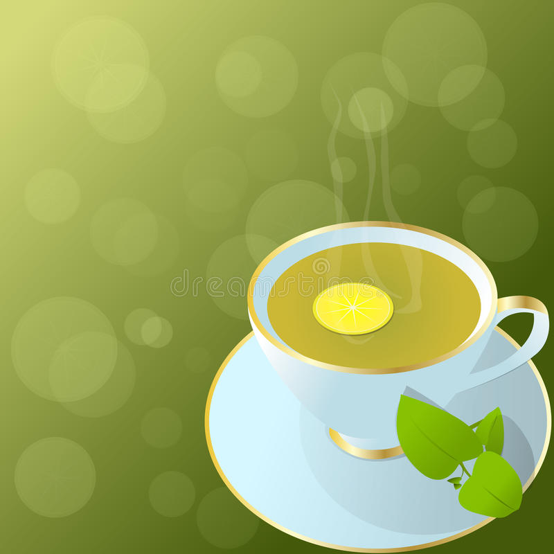 Download Cup of green tea. stock vector. Image of liquid, citrus - 23812119