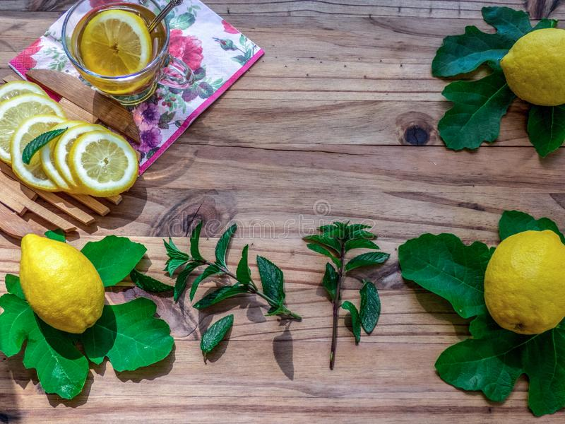 Cup of  green tea   with  full and sliced fresh lemons on wooden table.Mint and green leaves stock images
