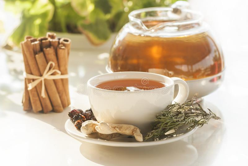 Cup of healthy winter tea with herbs and spices stock photography