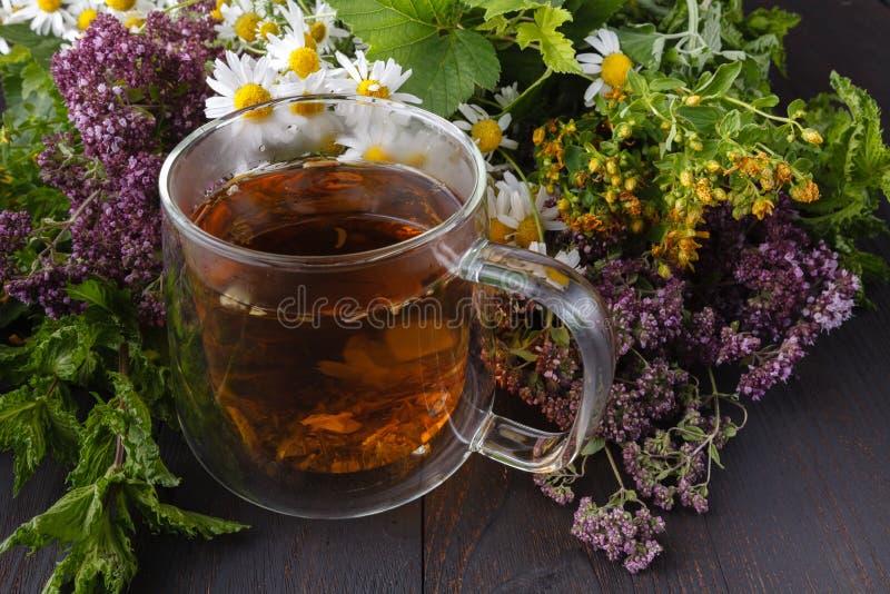Cup heißer Kräutertee Hauptszene mit heißem Getränk Detox oder sauberes Lebensmittelkonzept lizenzfreies stockbild