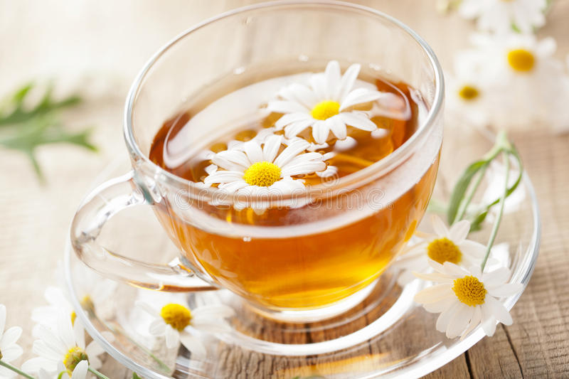 Cup of herbal tea with chamomile flower stock image