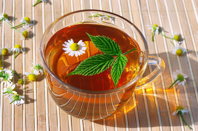 Cup of herbal tea with chamomile and green leaf stock images