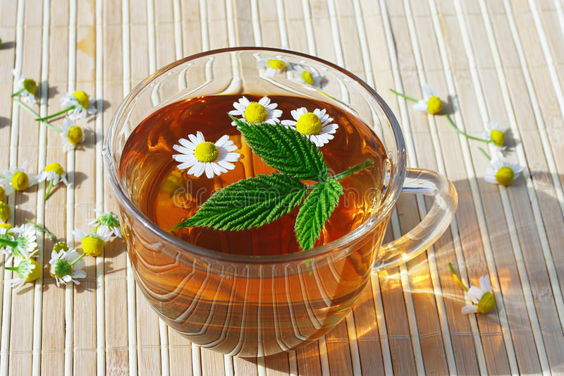 Download Cup Of Herbal Tea With Chamomile And Green Leaf Stock Image - Image of flower, freshness: 24840011