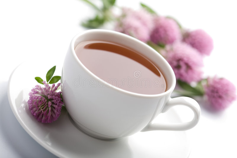 Cup of herbal tea and flowers isolated