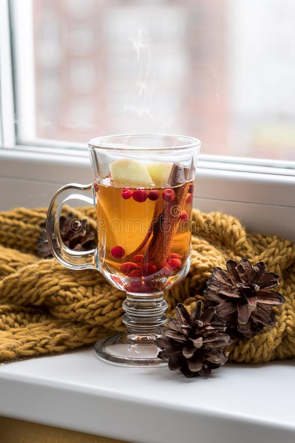 Cup of Hot AutumnTea with Apple Berry and Cinnamon Near a Window Yellow Scarf Hot Drink for Autumn Cold Rainy Days Hygge Concept A stock photos