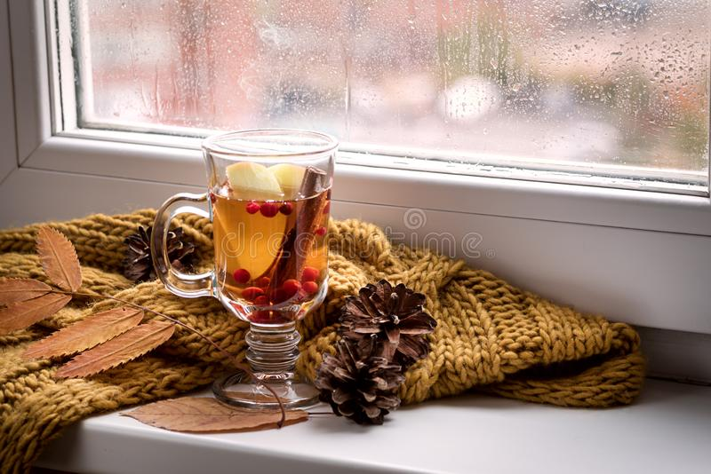Cup of Hot AutumnTea with Apple Berry and Cinnamon Near a Window Yellow Scarf Hot Drink for Autumn Cold Rainy Days Hygge Concept A. Utumn mood stock photography