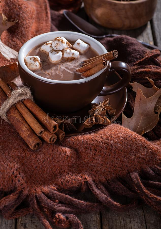 Cup of Hot Chocolate With Marshmallows and Cinnamon royalty free stock photos