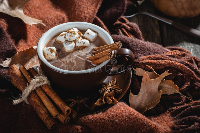 Cup of Hot Chocolate With Marshmallows and Cinnamon royalty free stock photo