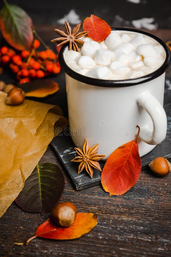 Cup of hot chocolate with marshmallows on the rustic wooden background with autumn decoration. Shallow depth of field stock photo