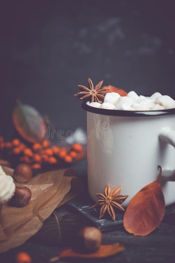 Cup of hot chocolate with marshmallows on the rustic wooden background with autumn decoration. Shallow depth of field stock images