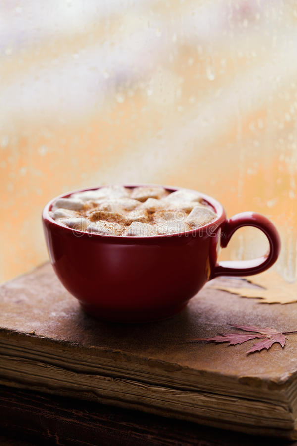 Cup of hot cocoa or chocolate with marshmallow and old vintage book against window in autumn rainy day. Cozy breakfast. royalty free stock photography