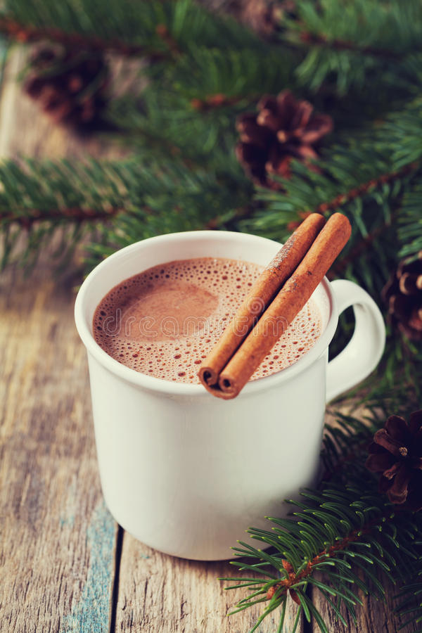 Cup of hot cocoa or hot chocolate on wooden background with fir tree and cinnamon sticks, traditional beverage for winter time royalty free stock images