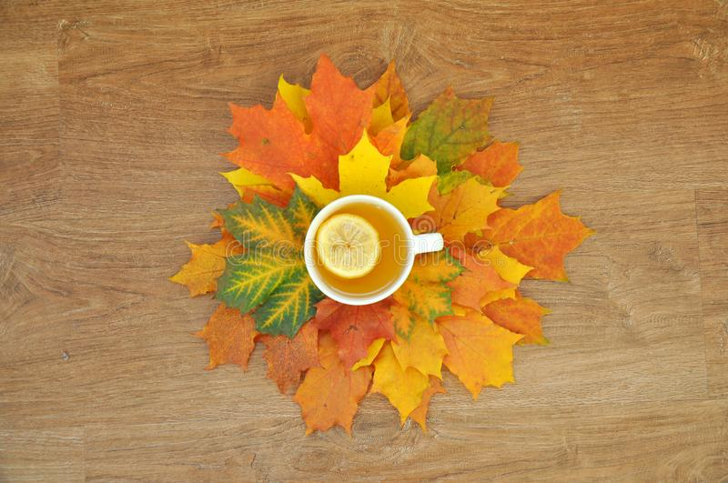 Cup of tea with lemon with autumn leaves royalty free stock photography