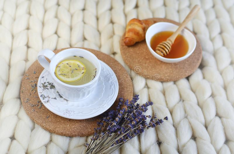 Cup with lavender tea, citrus and honey, croissant, white pastel giant knit blanket. Bedroom, flowers tulips, spring, woman day, morning concept royalty free stock images