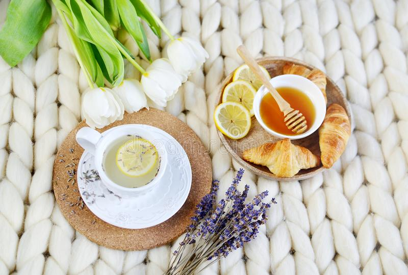 Cup with lavender tea, citrus and honey, croissant, white pastel giant knit blanket. Bedroom, flowers tulips, spring, woman day, morning concept stock image