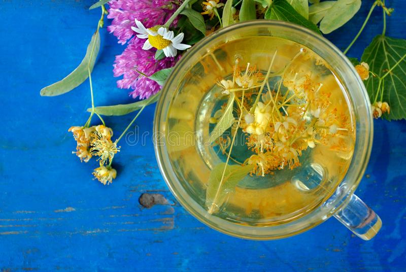 A cup of linden tea and medicinal herbs on a old blue wooden table. fresh clover, chamomile and linden. herbal tea. flu and cold r. Emedies stock photography