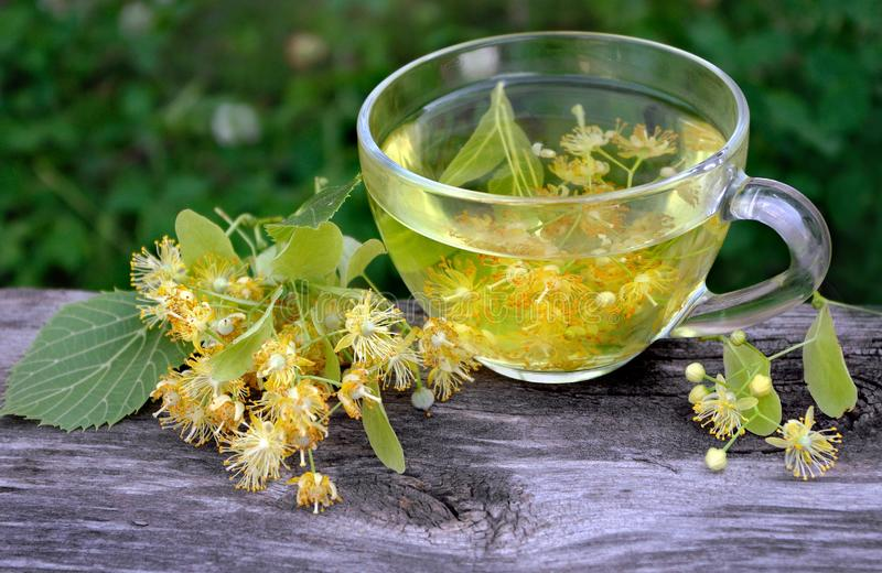 Cup of linden tea on a wooden table. white butterfly sitting on a cup of herbal tea. clover flowers and a cup of flower tea. herba. L tea royalty free stock photo