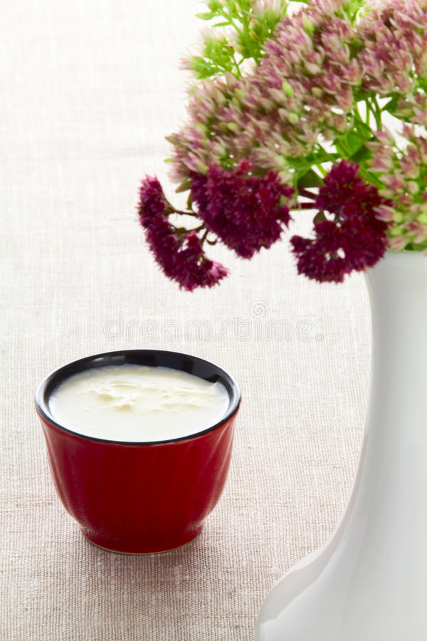 A cup of milk stock images