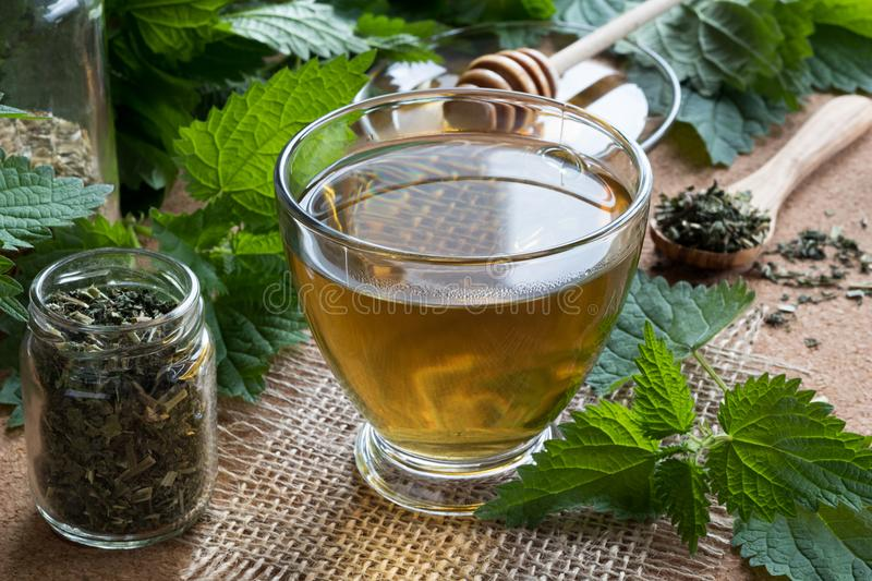 A cup of nettle tea with fresh and dry nettles in the background.  stock photo
