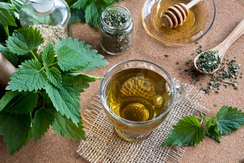 A cup of nettle tea with fresh and dry nettles. A cup of nettle tea on a table with fresh and dry nettles in the background stock image