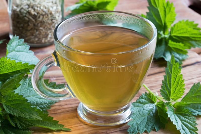 A cup of nettle tea on a wooden table. With fresh nettle leaves in the background stock image