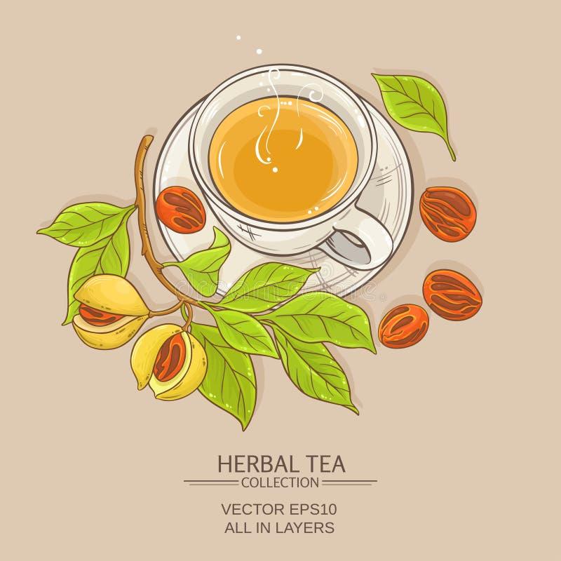 Cup of nutmeg tea. On color background vector illustration
