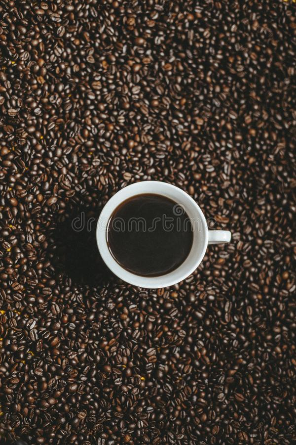 Free Cup Of Coffee With Cofee Beans Stock Photo - 164906180