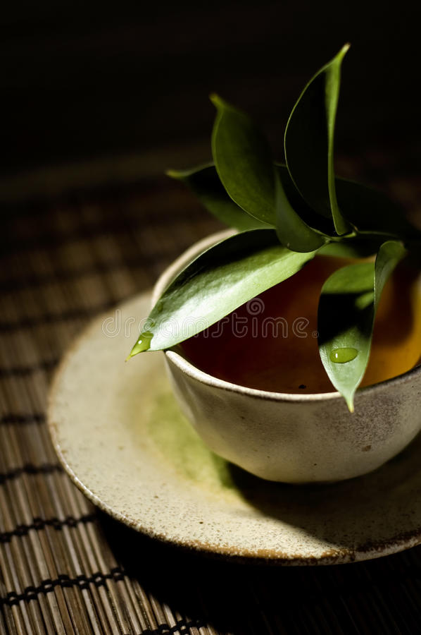 Free Cup Of Tea Royalty Free Stock Photo - 17105395