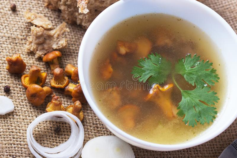 Cup of soup with chanterelles royalty free stock images