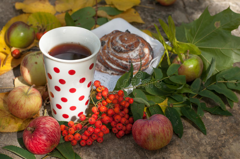 A cup of strong black tea, sweet bun with raisins, ash berries, apples and colorful autumn leaves on a stone surface royalty free stock photo