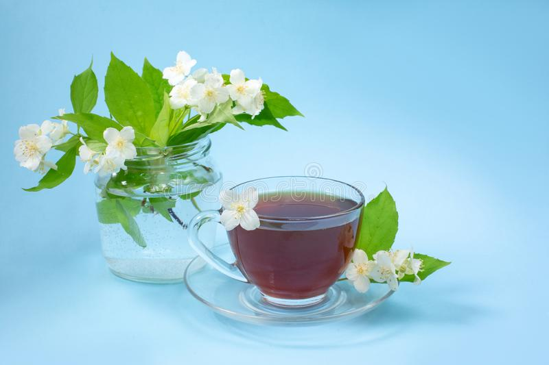 Cup with tea on a blue background. A small bouquet of twigs of blooming jasmine. Summer mood stock image