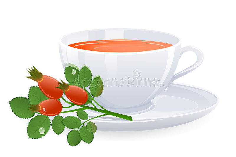Download Cup Of Tea With Branch Of Rose-hips Stock Vector - Image: 8571671