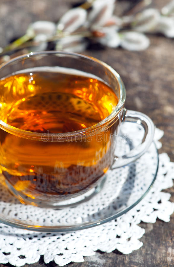 Cup of tea with branch of willow. On the wooden background stock image