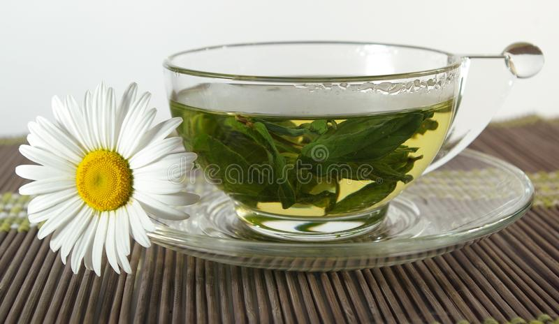 Cup of tea and chamomile royalty free stock photography