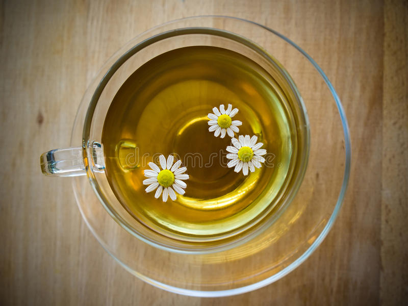 Cup of tea with chamomile stock image