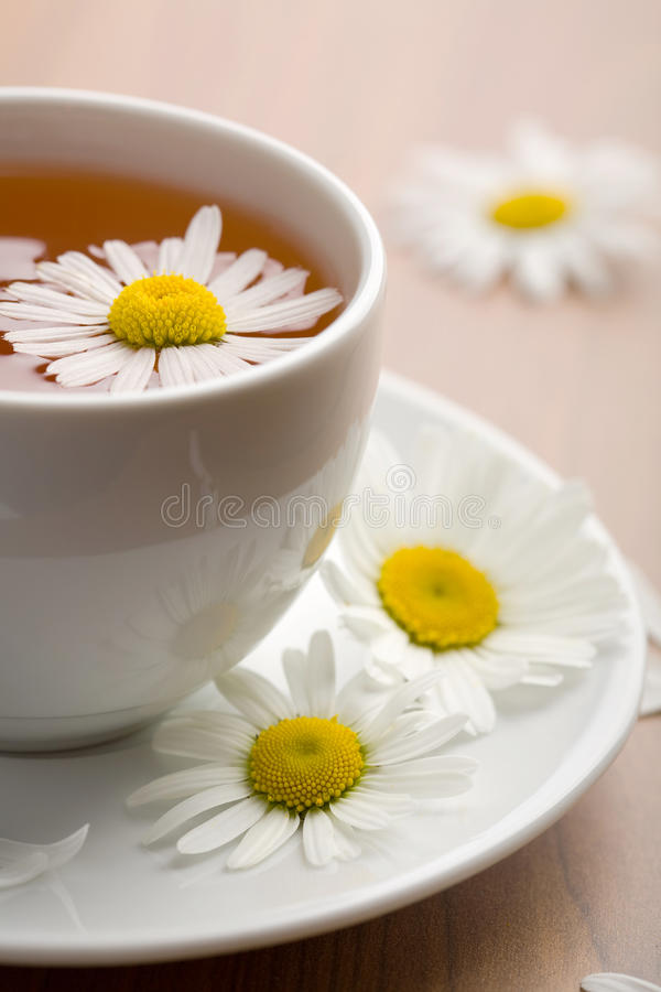 Download Cup Of Tea And Chamomile Flowers Stock Photo - Image: 13864340