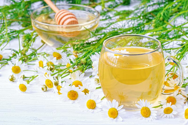 Cup of tea with chamomile flowers stock photo
