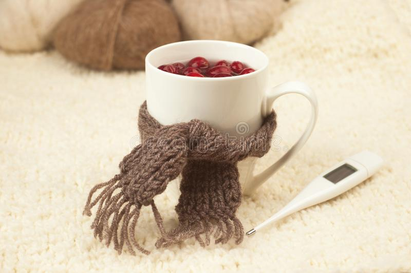 Cup of tea with cranberries, scarf, thermometer - the concept of seasonal respiratory diseases, treatment of colds. Cup of tea with cranberries, scarf stock photography