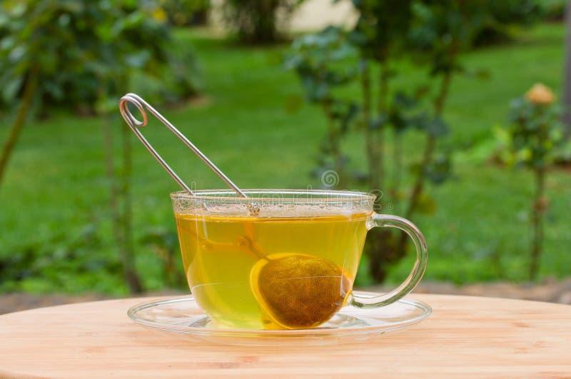 Cup of tea in green garden stock image