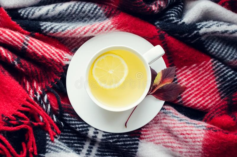 Cup of autumn tea. Cup of tea with lemon on red warm woolen blanket. Hot drink for rainy days. Hygge concept, autumn mood. Cozy autumn morning at home. Warm and stock images