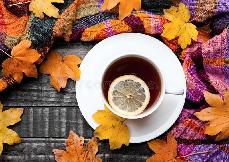 Cup of tea with lemon with scarf and autumn leaves royalty free stock photo