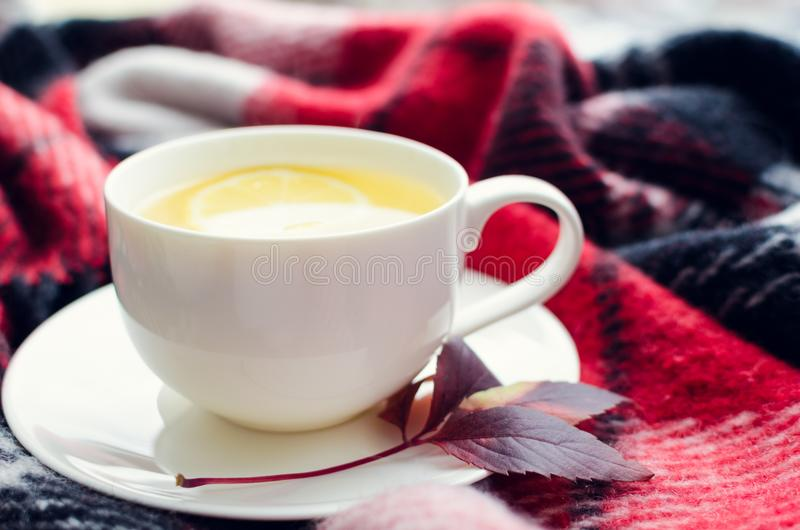 Cup of autumn tea. Cup of tea with lemon and warm woolen blanket on window sill. Hot drink for rainy days. Hygge concept, autumn mood. Cozy autumn morning at royalty free stock image